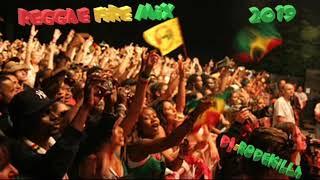 reggae brand new 2019 -alaine-sanchez-little hero-lutan fyah-i octane-chronixx