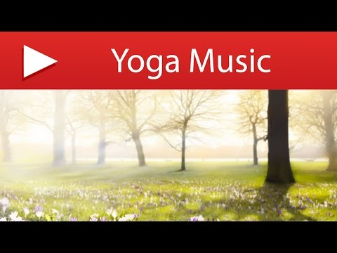 3 HOURS Yoga Music to Reduce Stress Levels: Background for Stress Relief