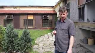 Przylot gołębi - Andrzej Pranke - oddział PZHGP 0271 Pilsko - Złotowski - 11.05.2013r.