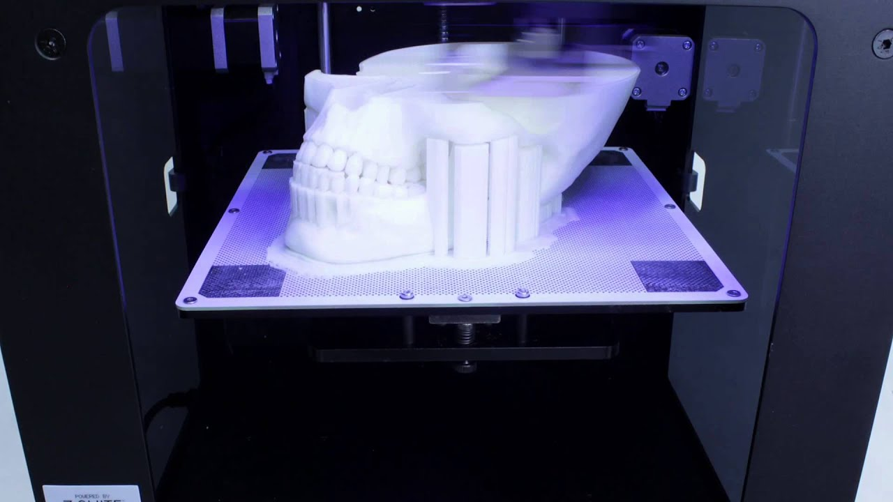 Zortrax M200 3D printer  3D printed human skull  YouTube