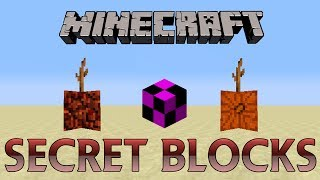 Minecraft - 10 Secret Blocks in Old Versions of Minecraft (Outdated)