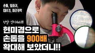 현미경으로 여러가지 확대해보기#손톱900배확대하기#실험…