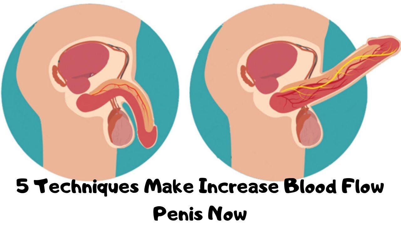 Exercizes increase blood flow to penis