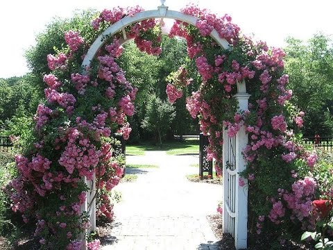 Садовые арки - YouTube