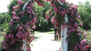 Прекрасные садовые арки для цветов(, 2016-02-23T18:28:05.000Z)