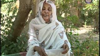 ياهو دة السودان الدمازين حاضرة النيل الازرق والحكامات