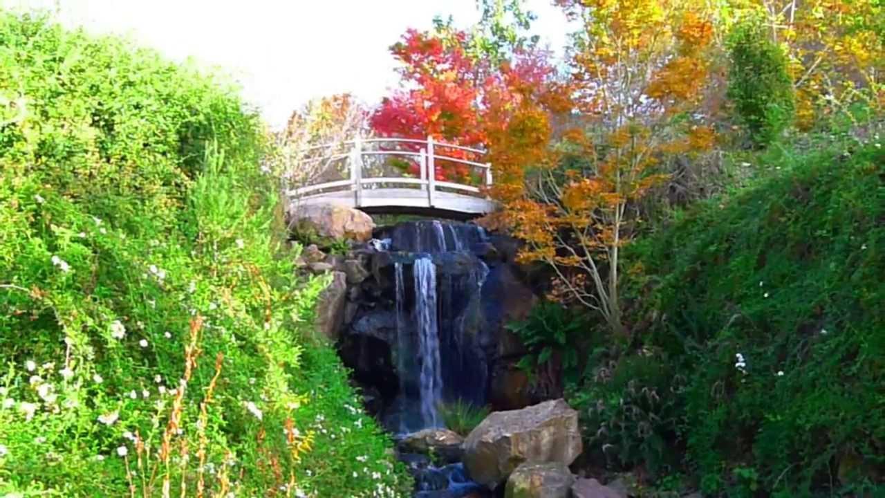 quarryhill botanical garden california kitaro spiritual garden youtube - Quarryhill Botanical Garden