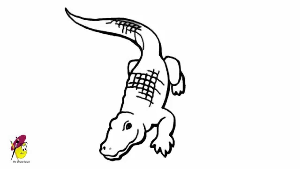 Crocodile animals easy drawing how to draw a crocodile for Easy to draw crocodile