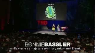 Bonnie Bassler - Jak rozmawiają mikroorganizmy - Lektor PL