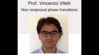 NSCS Online Seminar - Prof. Vincenzo Vitelli