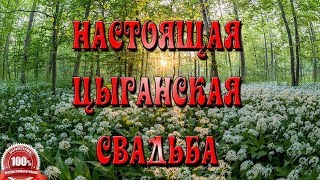 БОГАТАЯ ЦЫГАНСКАЯ СВАДЬБА. Николай и Алена, часть 1