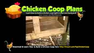 Buy Chicken Coop Online - Chicken Coops For Sale In Ohio