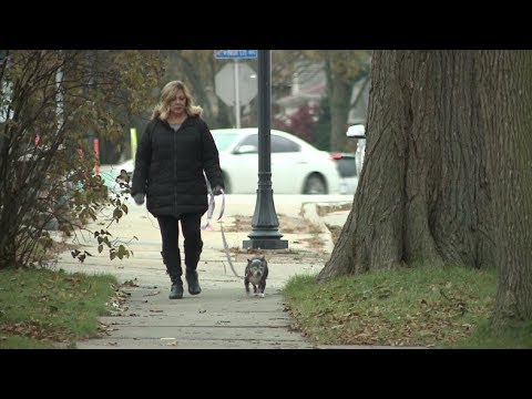 Wauwatosa police encourage dog walkers to keep eye out for crime