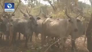 Big Story On Benue Assassination And Herdsmen Attacks Prt.3