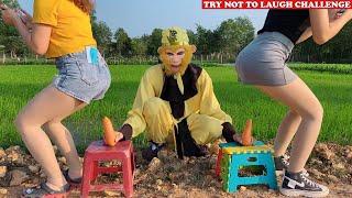 Cười Bể Bụng Với Ngộ Không Ăn Hại Và Gái Xinh - Phần 85 | Top  New Funny 😂 😂 Comedy Videos 2020