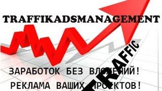 Заработок без вложений в проекте Traffiс ADS Management