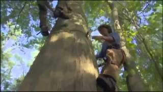 Roanoke  Documentary on the Missing Colony of Roanoke Island Part 2