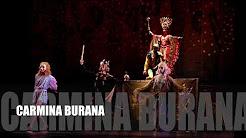 Ballet Ecuatoriano de Cámara, 27 de julio Teatro Nacional, aniversario 38