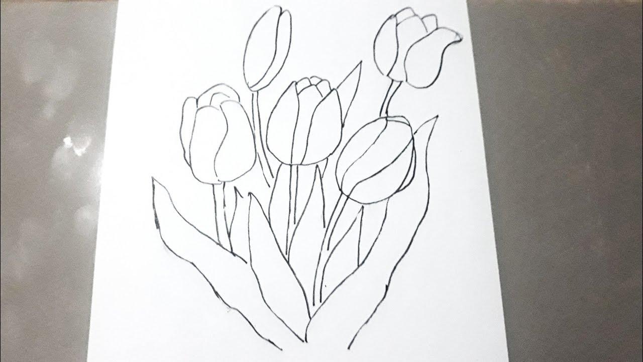 100 Gambar Sketsa Bunga Tulip Yang Mudah Kekinian