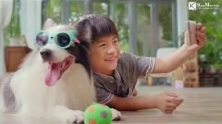 TVC Quảng cáo Ganador thức ăn thú cưng Làm phim quảng cáo Clip hài hước Phim doanh nghiệp KimMarcom.