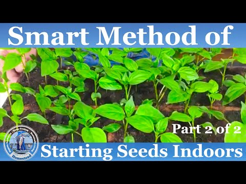 HD How to Start Seeds Indoors - Part 2 of 2