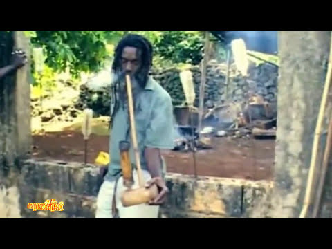 "Official Music - Stephen ""Ragga"" Marley ft Spragga Benz & Damian Marley ""Bongo Nyah"""