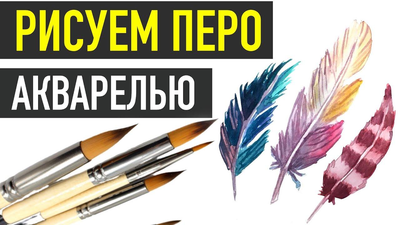 Как нарисовать ПЕРО АКВАРЕЛЬЮ