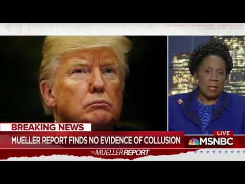 Michael Berry - Sheila Jackson-Lee Asked Whether She Accepts Mueller's Findings