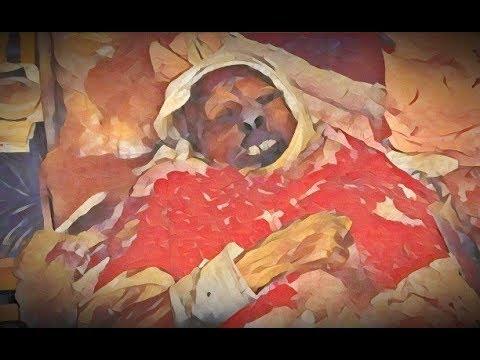 """""""В поисках Валентины Абрамовой"""". Социальный хоррор"""