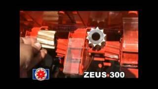 ZEUS 300