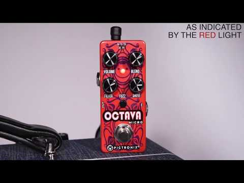 Pigtronix Octava Micro Demo by Circuit Designer Thomas Elliott