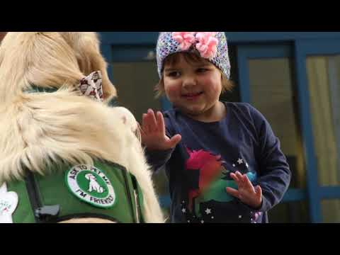Mark - DUNKIN' DONUTS AND BASKIN-ROBBINS BRINGING THERAPY DOGS TO HOSPITALS
