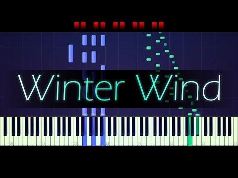 "Etude Op. 25 No. 11, ""Winter Wind"" // CHOPIN"