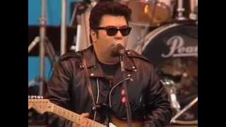 Watch Los Lobos My Babys Gone video