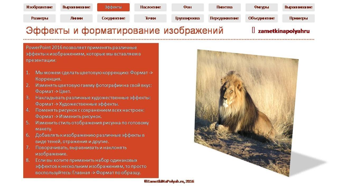 Редактирование изображений в PowerPoint 2016: эффекты и форматирование.