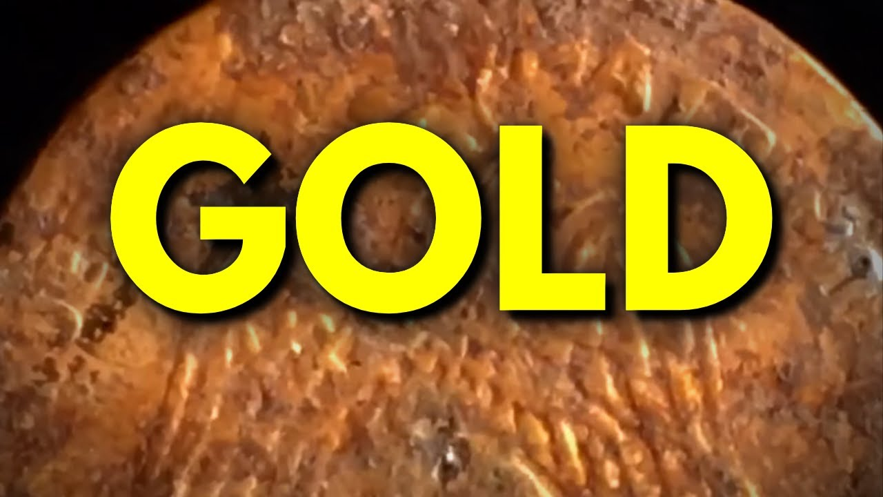 Metal Detecting Permission Leads To Gold Coin