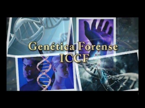 genetica-forense