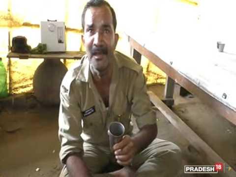 शराब पीकर मतवाला पुलिसवाला, बोला- मैं कुत्ता नहीं हूं, मैं पागल नहीं हूं...
