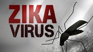 Zika Threat vs Congressional Apathy | Pure Logic Episode #7