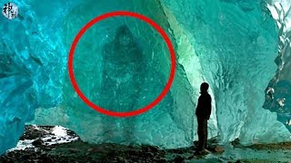5个难以置信被冰封了多年的生物
