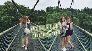 Hiking at MacRitchie Reservoir Treetop Walk!  ♥ | 12.07.17