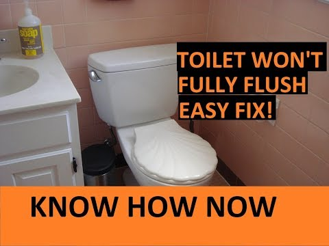 Toilet Not Clogged But Not Flushing Properly