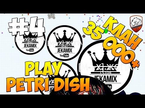 Petri Dish | DimkFedorov (LP #4) [...