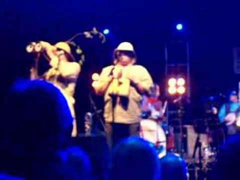 Bonzo Dog Doo Dah Band - Astoria 2008 - Hunting Tigers