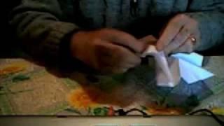 Origami Rosa Da Giorgio