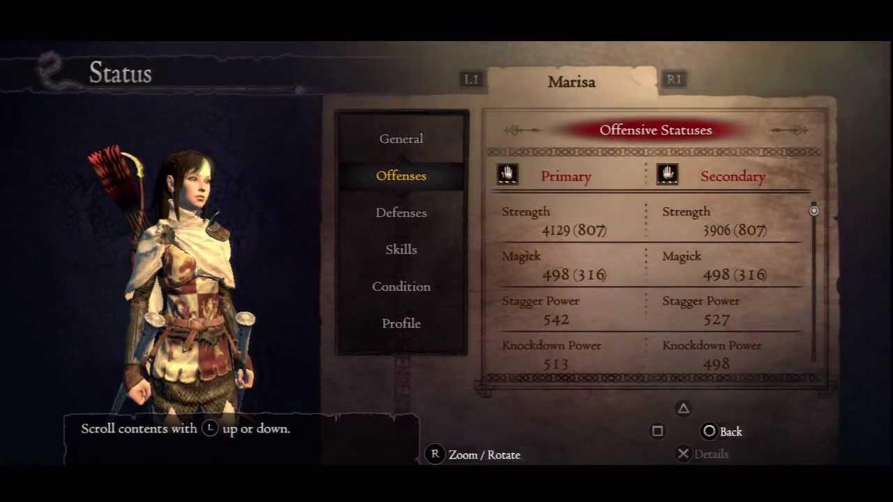 Dragon Dogma Assassin Build