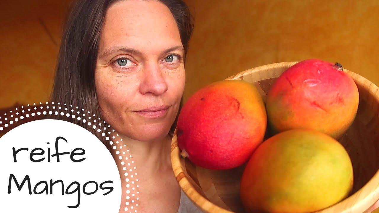Mango - eine exotische Frucht zum Verlieben! 3 Sorten im Test + Verlosung!