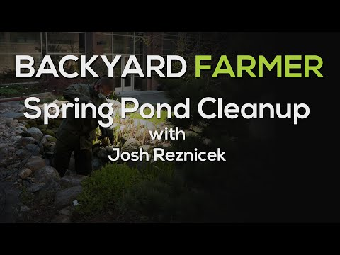 Spring Pond Cleaning