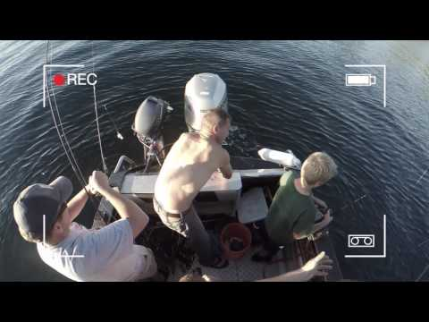 Washington Scuba Diving