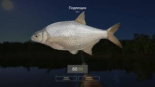Русская рыбалка 4 - Старое озеро Комариное - Зарабатываю серебришко